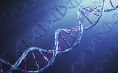 Huntington's disease: could a cancer drug hold the key?