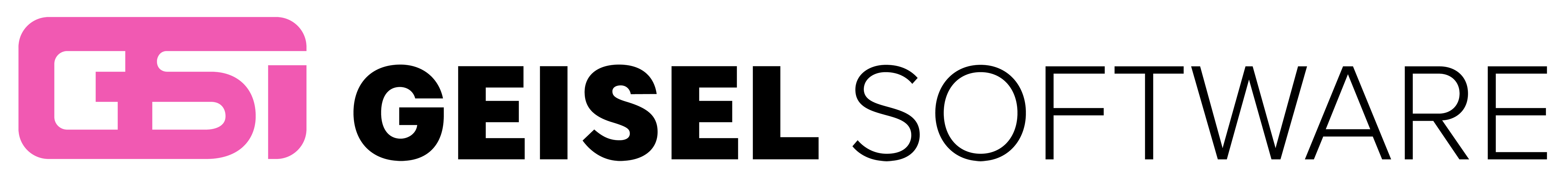 Geisel Software Logo